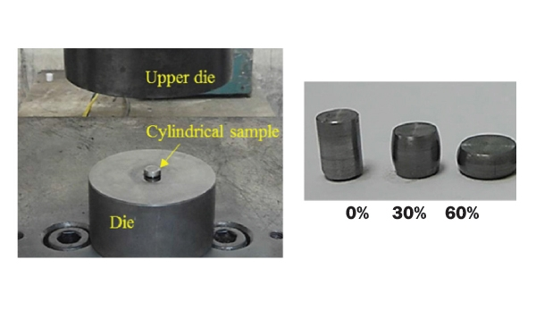 Wear Improvement of Tools in the Cold Forging Process for Long Hex Flange Nuts